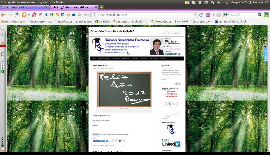 Imagen del blog hasta 31 de diciembre de 2011