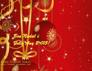 Bon Nadal 2014