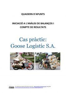 Cas Pràctic Goose Logistic
