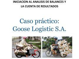 Caso Práctico Goose Logistic