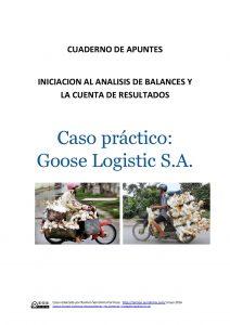Análisis de balances. Caso práctico Goose Logistic